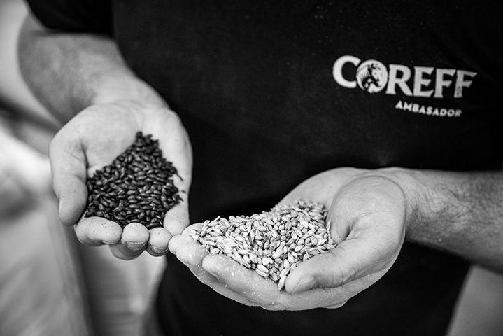 COREFF - Mélange des céréales